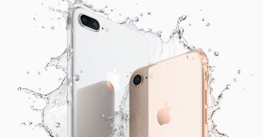 iPhone 8 and 8 Plus Water Resistance